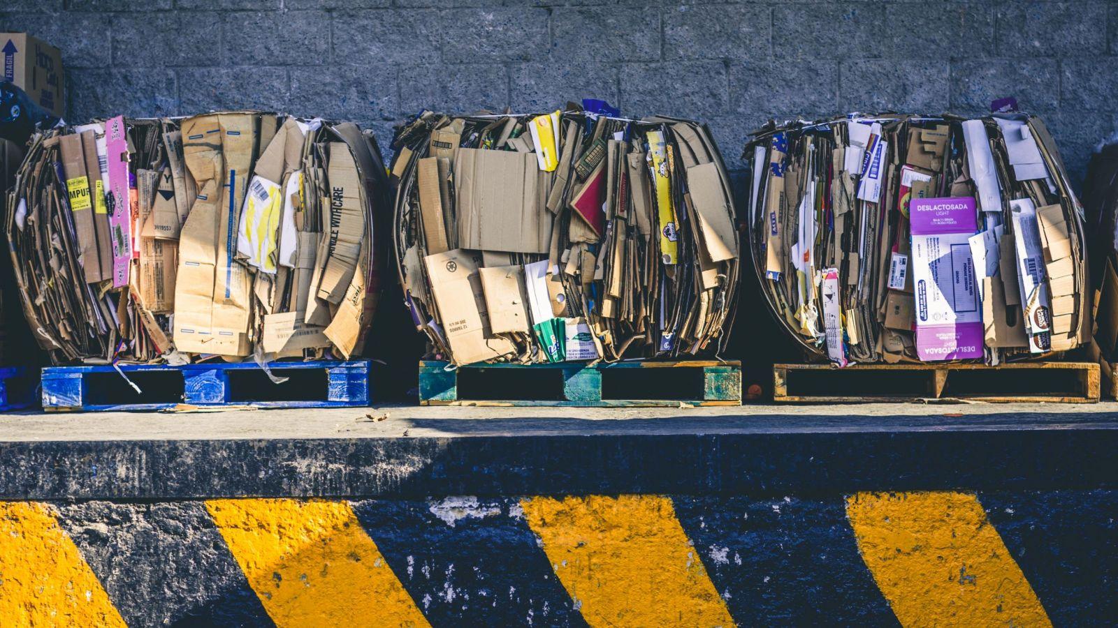 Waste Management Audit