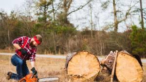 Arbeitsblatt für Baumarbeiten